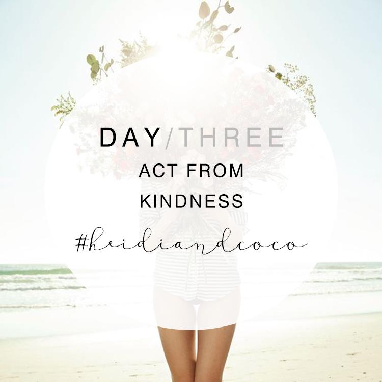 14 Days to Wellness - Day 3 / www.heidiandcoco.com