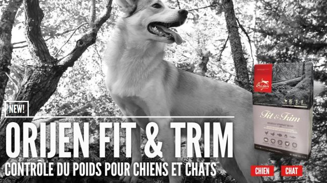 Orijen-fit-trim-chat-chien