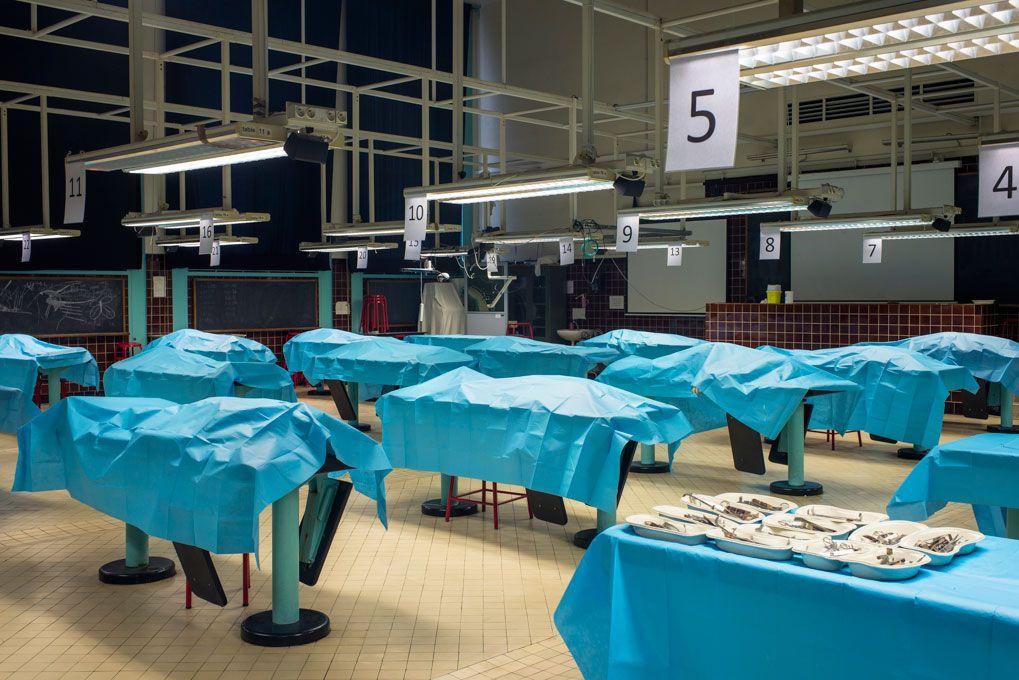 12 corps, provenant du centre des dons du corps, seront les sujets des éléves pour la semaine à venir.