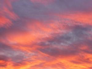 Sunrise in Loveland, Colorado.  Photo by H.M. Kerr-Schlaefer