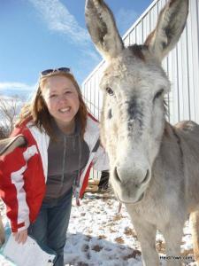 Heidi, the Mayor of HeidiTown at Longhopes Donkey Shelter in Bennett, Colorado.