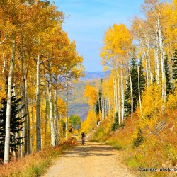 Fall Hike Steamboat Springs, Colorado. 2012_Lukens (2)