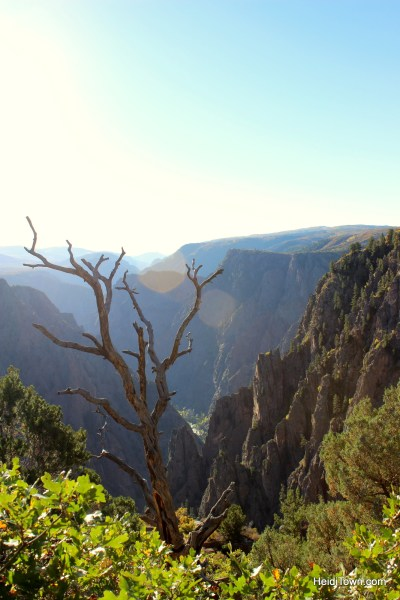 Black Canyon of the Gunnison National Park. Canyon photo. HeidiTown.com