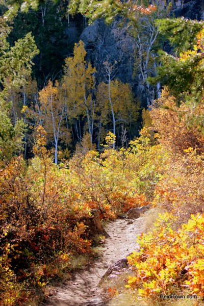 Hiking at Black Canyon of the Gunnison National Park. HeidiTown (1)