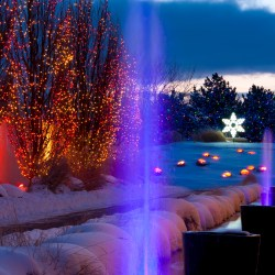Holiday happenings in the Mile High City HeidiTown.com Holiday Extravaganza at Denver Botanic Gardens