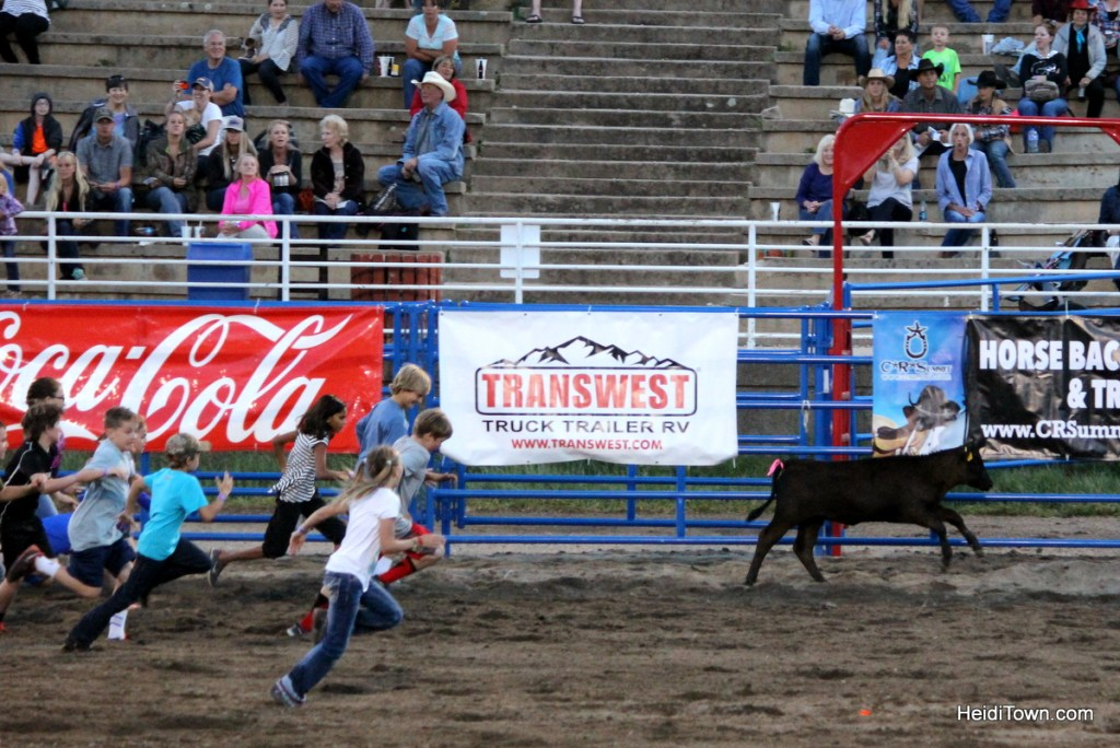 Kickin' it at the Pro Rodeo in Steamboat Springs. calf scramble kids rodeo event. HeidiTown.com