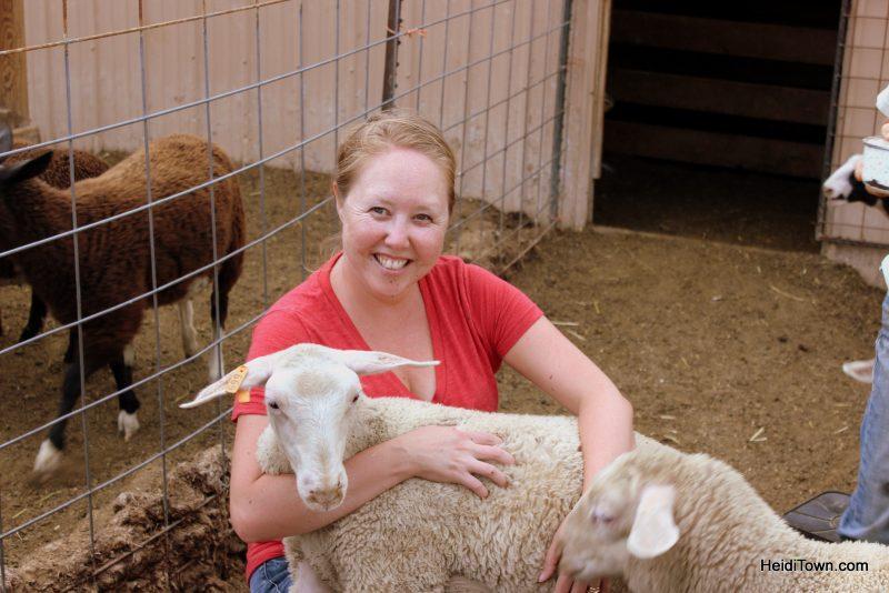 Heidi & Heidi the Sheep at The Living Farm. HeidiTown.com