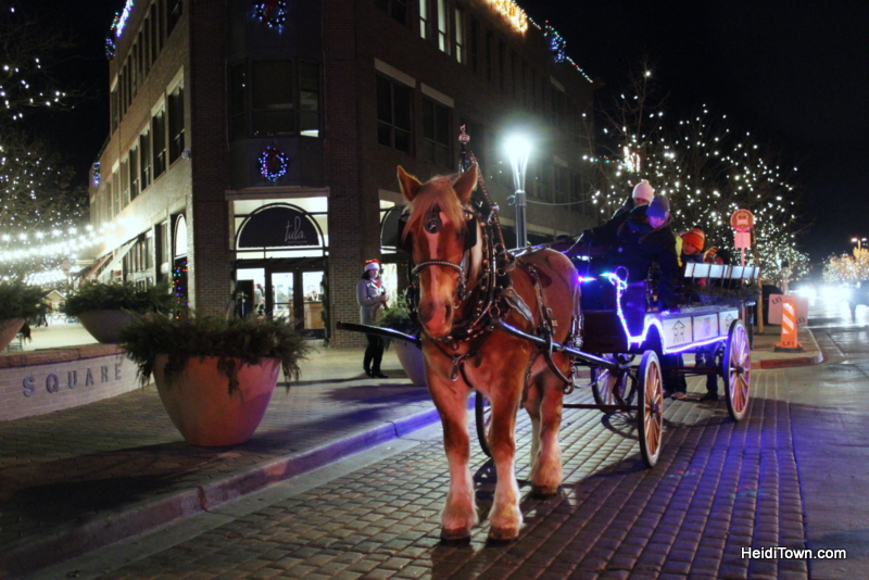 Fort Collins for Christmas, horse & carriage rides