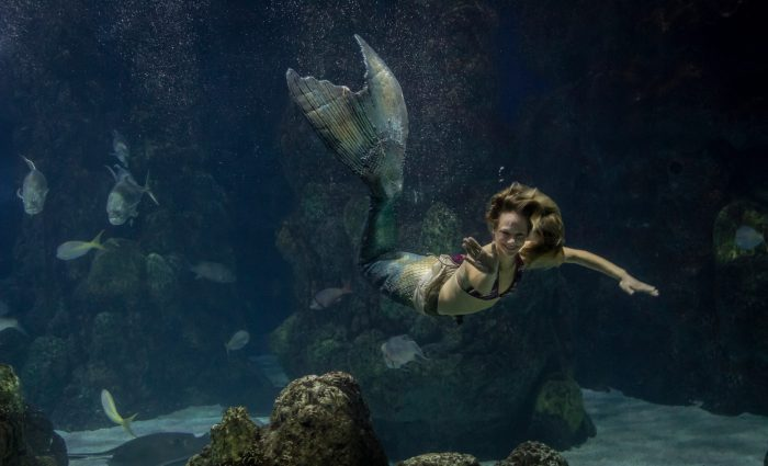 Mystic Mermaids, photo by Mike Goodell
