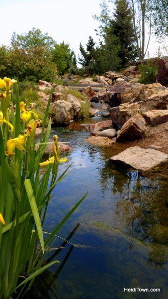 Flower Power in Fort Collins, a Visit to The Gardens on Spring Creek. water featured in Children's Garden. HeidiTown.com