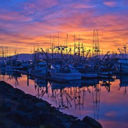 Squalicum Harbor at sunset / Photo by: Lou Nicksic / Credit: Bellingham Whatcom County Tourism