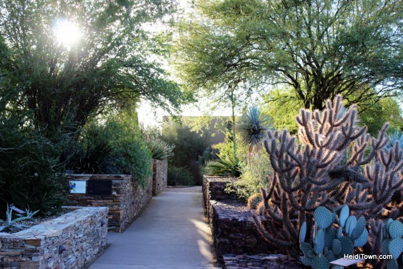Visit Another Planet Arizona's Desert Botanical Garden. HeidiTown (3)