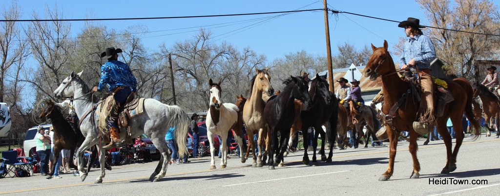 Craig & Maybell Horse Drives & Tacos in Northwest Colorado. HeidiTown (5)