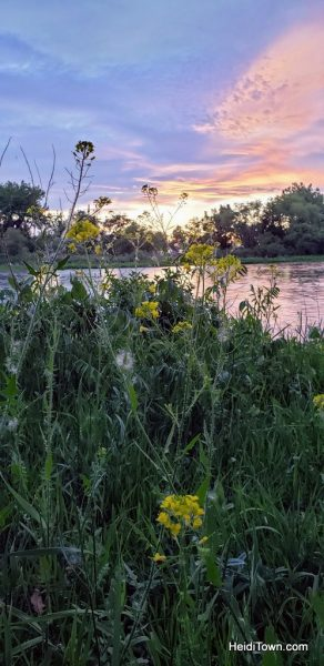 Glamping in Greeley, Colorado A Yurt Stay at Platte River Fort & Resort. HeidiTown (11)