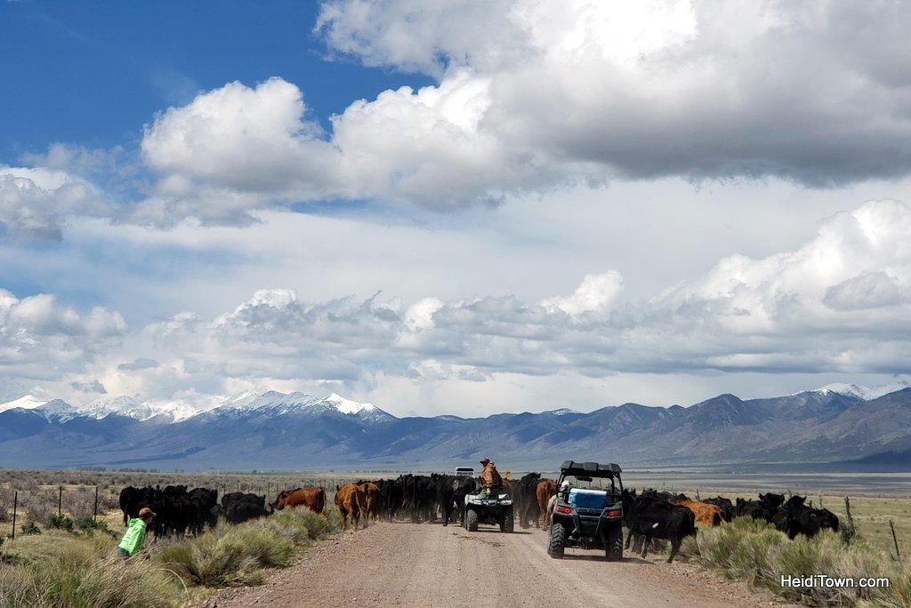 Living History in the San Luis Valley of Colorado. HeidiTown.com (12)