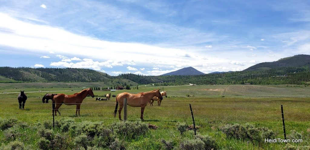 Day Trip from Snow Mountain Ranch in Grand County, Colorado. HeidiTown (13)