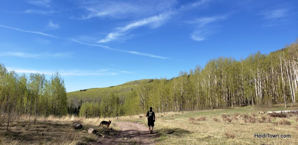 North Rock Creek Trail #701 in spring. San Luis Valley. HeidiTown (2)
