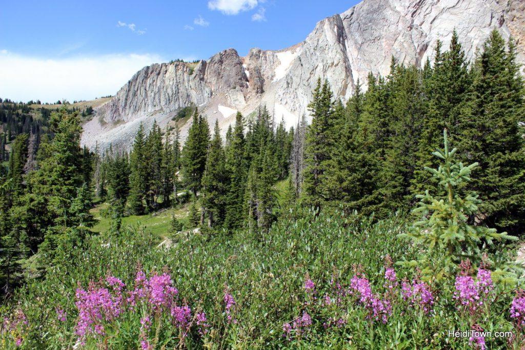 Where Romance & Moonlight Meet, Snowy Range, Wyoming