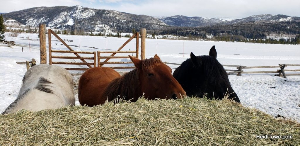 Hot Tubs & Horses at Vista Verde Ranch in Colorado. HeidiTown (15)