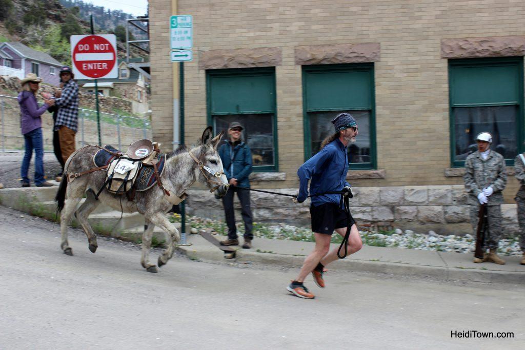 Burro Racing in Idaho Springs, Colorado Race Your Ass Off. HeidiTown (19)