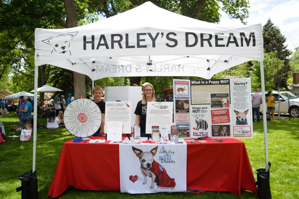 Fun With Your Fur Friend in Fickle Park, Berthoud, Colorado. Puppy Mill Awareness Day