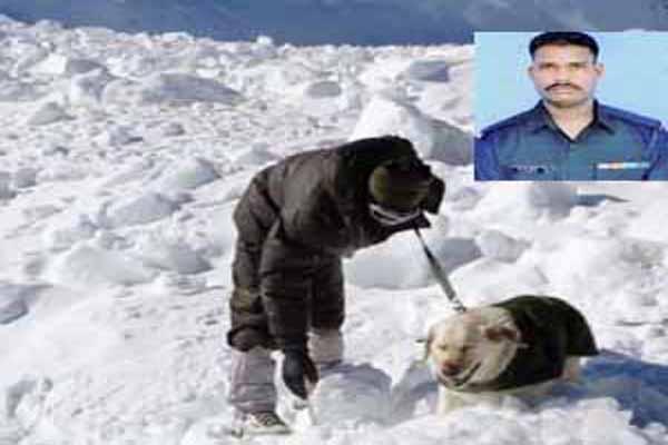 siachen glacier indian soldier found alive buried under 25 feet snow
