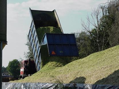 maiskuil vrachtwagen leende 2