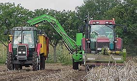 Voor de rooier een Case MX135 tractor, links een MF