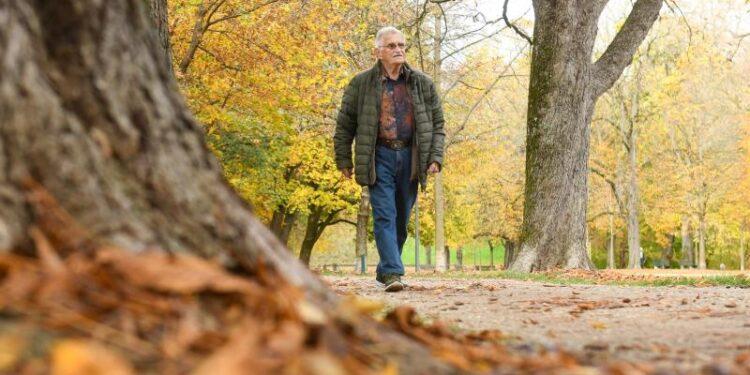 An elderly man is walking in autumn parkland.