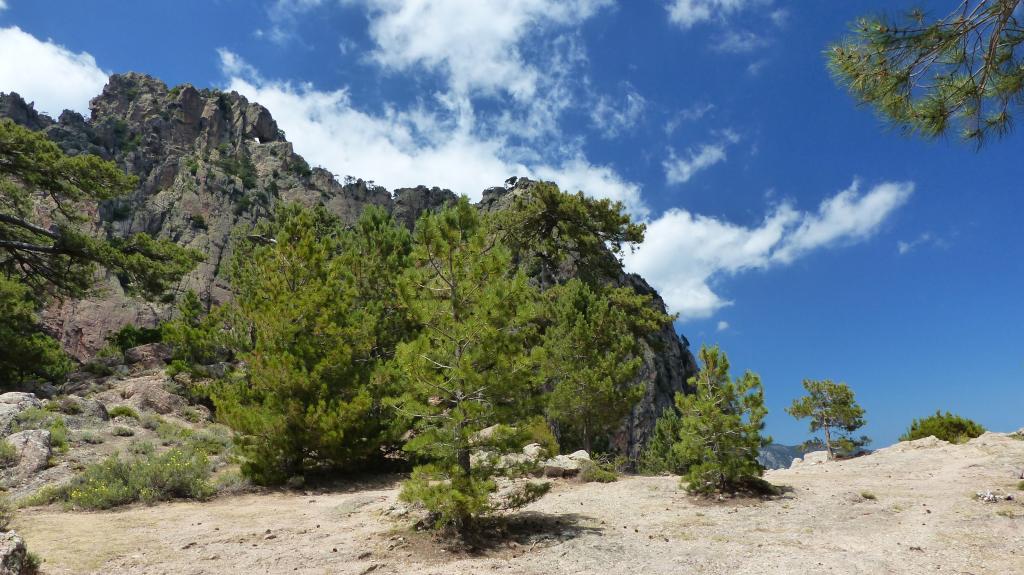 Korsika Tag 10 – Vom Bavellapass zur Refuge de Paliri und zurück