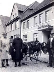 Kuh07 02K 1932 EverratsMensching 05 006Krömer BockBrinkmann