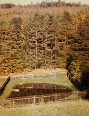 Fischzuchtgrund Einsiedel 1960