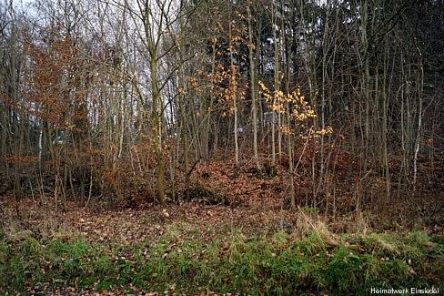 Ehemaliger Standort nahe Waldklause Einsiedel