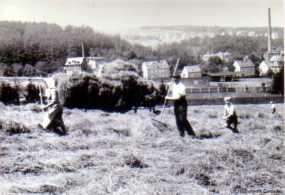Heuernte beim Franke-Bauer 1944