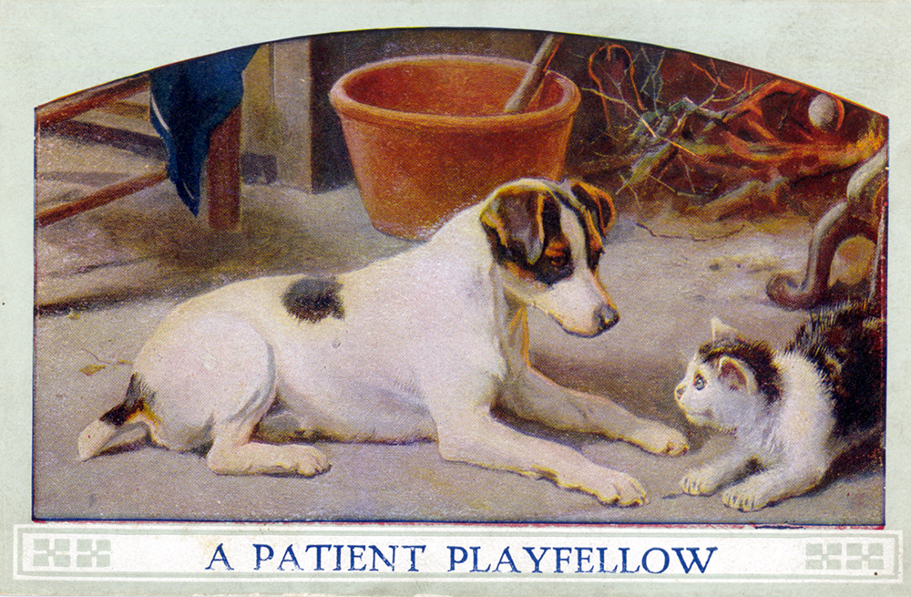 """""""A Patient Playfellow,"""" postcard, c. 1900. Pets were often seen as a way for children to learn good behavior and caring for others. General Postcard Collection, Detre Library & Archives at the History Center."""