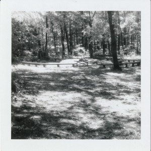 One of the first things to be built at Camp Meadowcroft was the campfire circle. This area is currently just inside the palisade of the Monongahela Indian Village today.