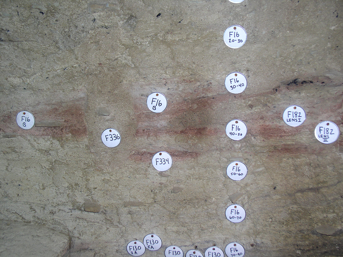 A close-up showing evidence of ancient campfires built at the site. The heat of the fire altered the sandstone particles to the red color. Also evident are bits of charcoal produced in the fires. Tag F336 indicates where a post hole was dug down through the existing fire pit at a later date.