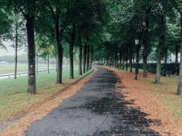 Auf alten Wegen wandeln