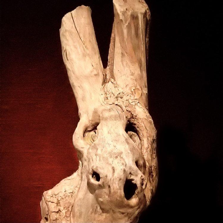 Donkey Wood ©HelenBushe