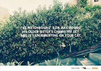 cat-experiment-560x395.jpg