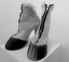 horse-shoes.jpg