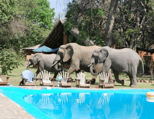 Malawi & Zambia Small Group Adventure Tour