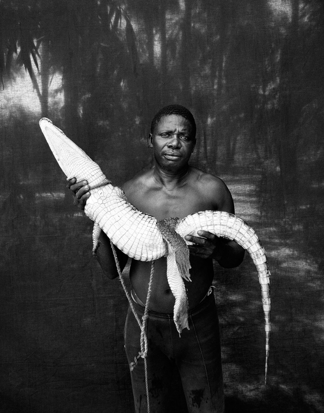 Jason Florio photography - black and white image from the Makasutu series of portraits - A Gambian man stands against a transparent black background, in the jungle, staring at the camera, holding a rescued crocodile, West Africa
