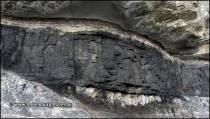 Coal in the cliffs