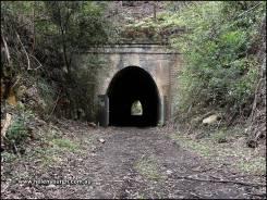 Lilyvale Tunnel No. 1 (tunnel No. 5)