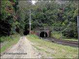 Lilyvale Tunnels
