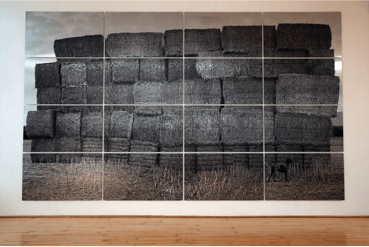 Blocked Field : 2011 photographic print on aluminium panels
