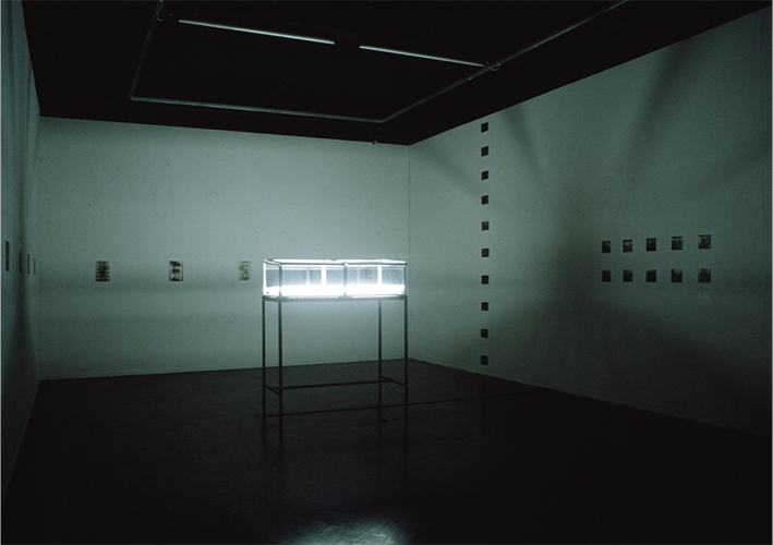 Green House / Yellow Lemon : Installation, Chapter Arts Centre 1985