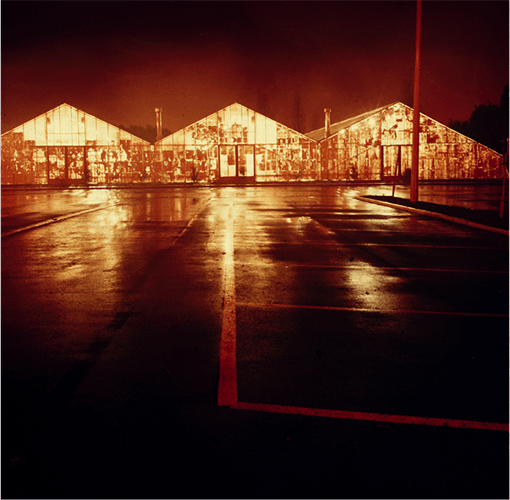 Green House / Yellow Lemon (St Melons Garden Centre) : Chapter Arts Centre 1985