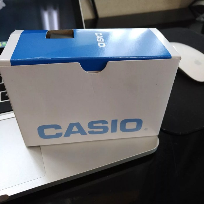 review_cheap_casio_watch1